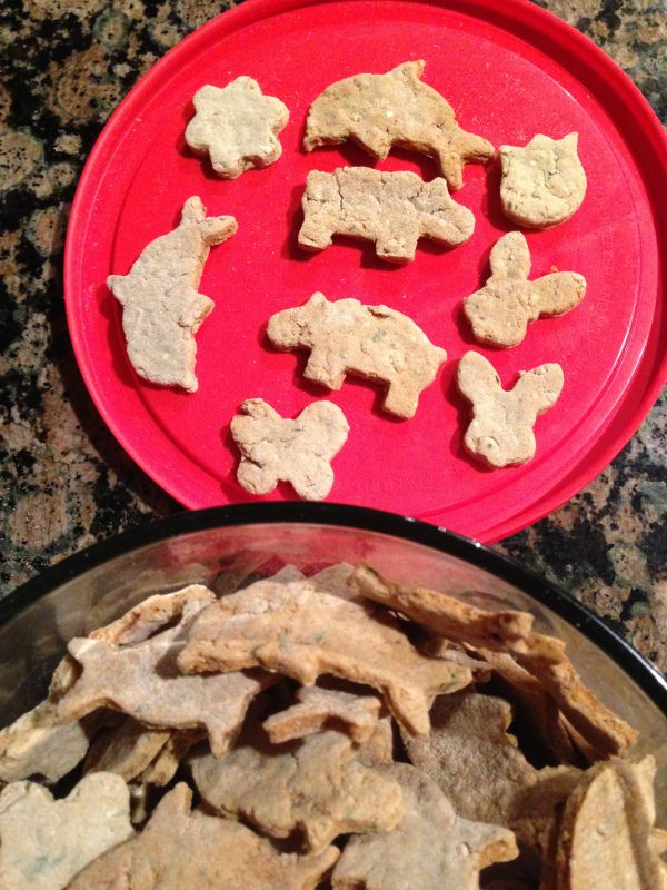 Chicken & Rice Grain Free Dog Treats