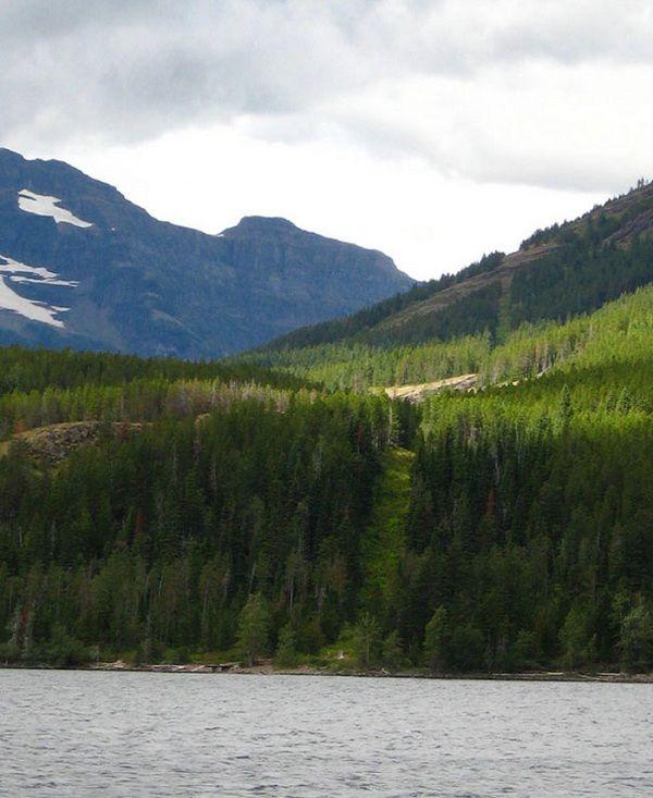 美國和加拿大之間的邊界: 這是世界上最長的國際邊界,中間的邊界就是一條5,500英里的山中小徑。 (Boundary between USA and Canada)