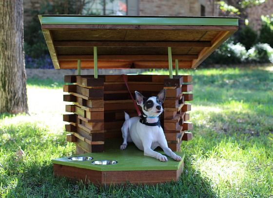 Canine Cribs. These Amazing Dog Houses Were Built In Dallas. - The Mixmaster