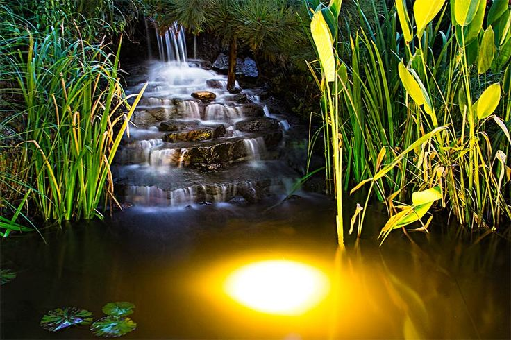 Submersible / under water pond lights - we are your people!