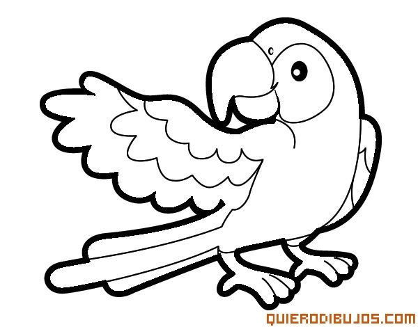 Loro para colorear | Acuarelas, arte | Coloring books, Coloring