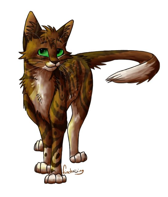 Rocky tail. A warrior from mountain clan. He is midnight flames secret mate and the father of flame kit/paw. He brave but quiet and will stop at nothing to find a way for him and midnight flame to be together