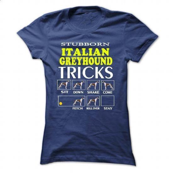 Italian Greyhound - #tee test #silk shirts. PURCHASE NOW => https://www.sunfrog.com/Pets/Italian-Greyhound-85396004-Ladies.html?60505