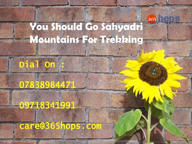 You Should Go Sahyadri Mountains for Trekking >>> #Mumbai is blessed with vast and mighty #Sahyadri Mountains surrounding it. The untamed greenery leaves you spellbound and mesmerized by its beauty of a heavenly nature. Sahyadri Mountains change itself seemingly according to the time of the year. With good Rail and road connectivity, one can easily go for a quick weekend getaway out of its regular city blues.   #GorakhgadCaves #Trek #Vikatgad #Ajobagad #SandhanValley #Mumbai