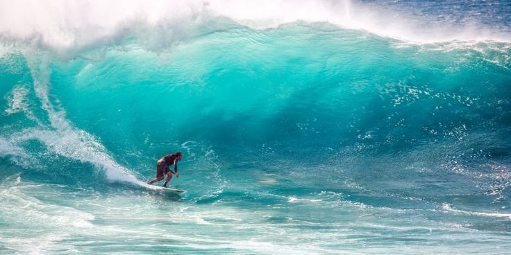 Head & neck injuries are the most common type of surfing injury, accounting for 37% of injuries  http://surfingmedicine.com/concussions-in-surfers/