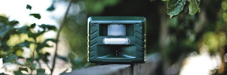 Our bestselling Yard Sentinel STROBE will keep pests out of your yard using safe, humane, and inaudible ultrasonic technology   Aspectek