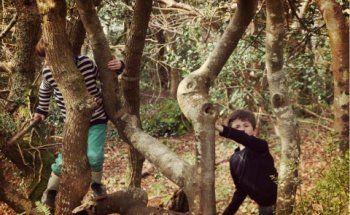 La Fôret du Stangala... Le site naturel préféré des Kidi-reporters du Finistère !