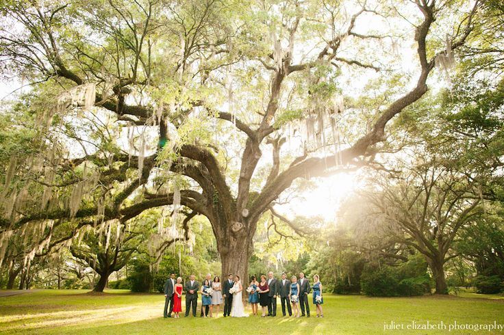 Legare Waring House Wedding From Juliet Elizabeth Photography: 19 Best Weddings At Legare Waring Images On Pinterest
