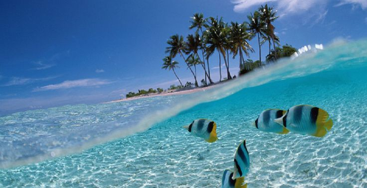 Sol, Playa...Destino