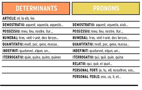 determinants i pronoms
