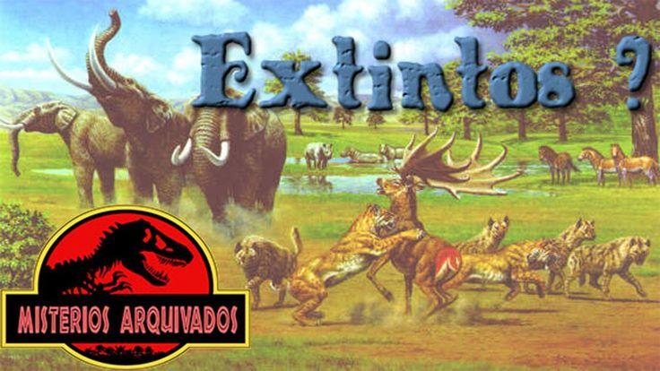 Animais extintos, você sabia?