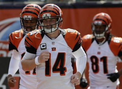 As we reach the halfway point of the 2015 NFL season with all its on-field and off-field drama in the NFL offices, our writer takes a look at the five surprises of the past season. #football #BALvsAZ #broncos #panthers #packers #patriots #bengals