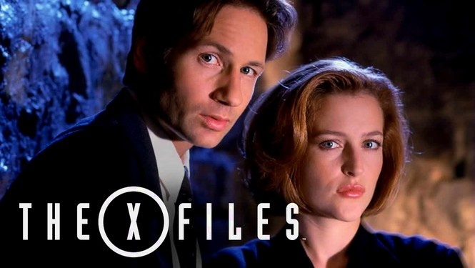 Tracing both their personal and professional lives, this award-winning Fox series centers on FBI agents Scully (Gillian Anderson), a skeptic, and Mulder (David Duchovny), a believer, and their efforts to uncover a government conspiracy to hide evidence of extraterrestrial activity. From voodoo curses to bodies found in California that are missing various internal organs, the chilling show also stars Mitch Pileggi and Robert Patrick.