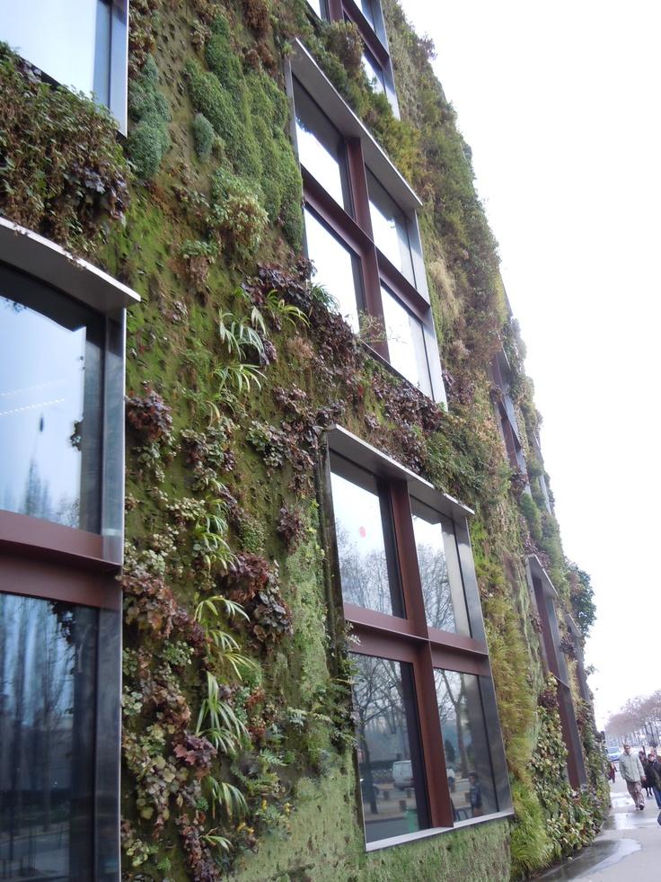 Mur végétal du musée du quai Branly