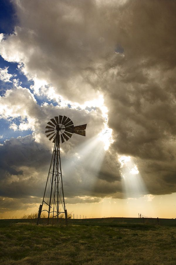 Windmills, turning slowly in the breeze to water the herd and flock. SA