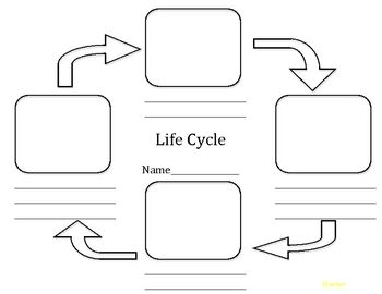 Best 25+ Life cycle assessment ideas on Pinterest