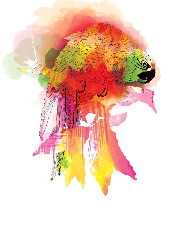 Bird by Ella Tjader
