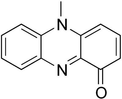 Structural formula of pyocyanin