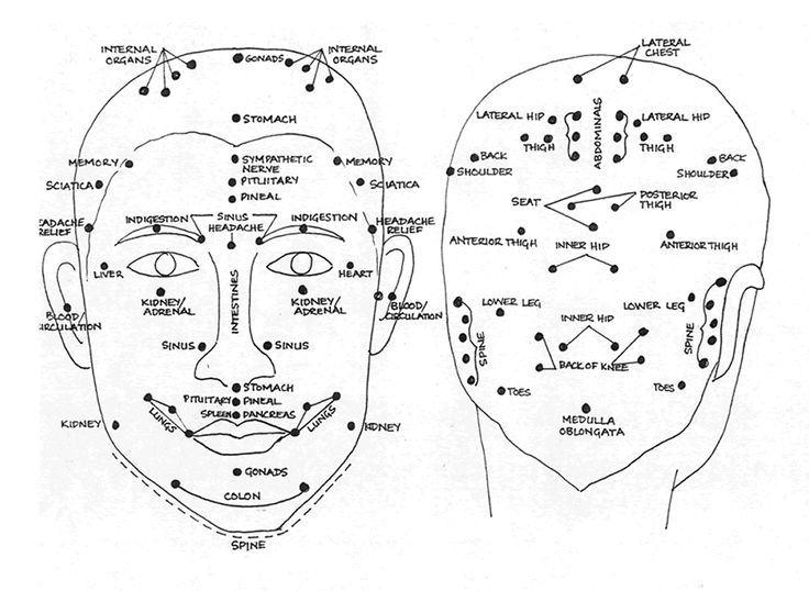 Face and Head Reflex zone | Acupressure points ...