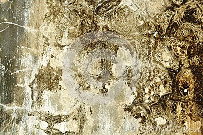 Old cement wall texture grunge abstract & cement wall backgrounds, http://www.dreamstime.com/stock-photography-image50576292#res7049373