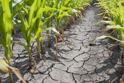Un nou val de secetă va traversa România în această vară http://www.antenasatelor.ro/curiozit%C4%83%C5%A3i/natura/8711-un-nou-val-de-seceta-va-traversa-romania-in-aceasta-vara.html