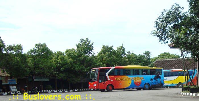 hayward bus,trayek bus gajah mungkur,bus routes dayton ohio