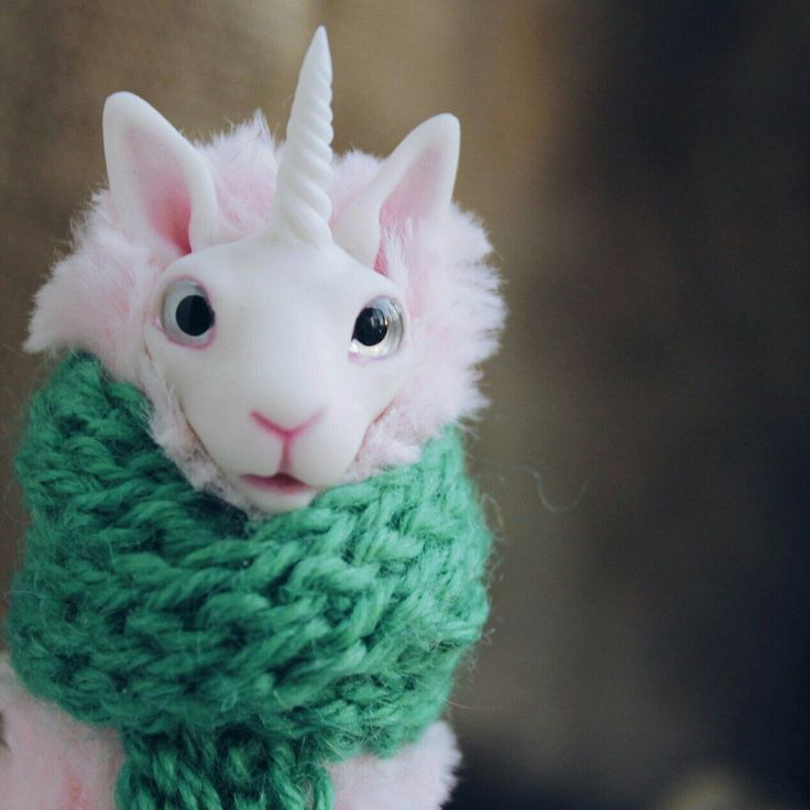 New llamahorns in our shop)