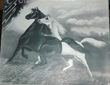 2 Spirited Horses Lithograph | Details about Vintage Print - 1908 - 2 Spirited Horses