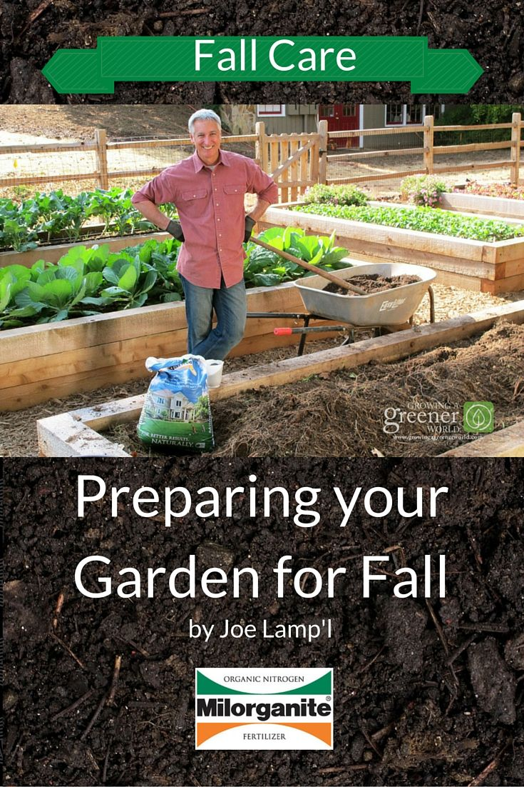 Four simple but important steps to prepare your garden for ...