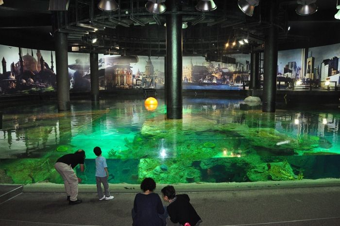 Florya Aquarium is close to us.. About us:www.faikpashahotels.com
