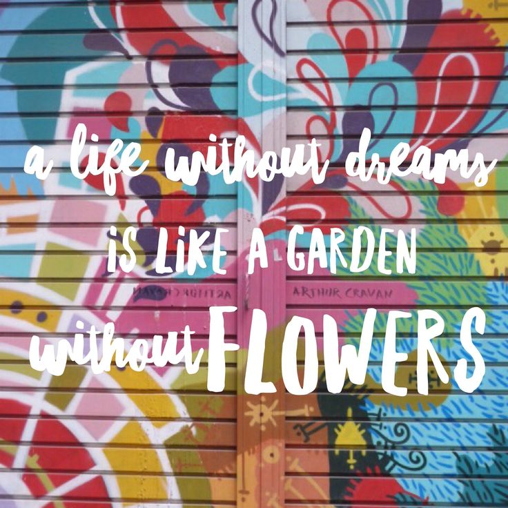 ¡A life without dreams is like a garden without FLOWERS!