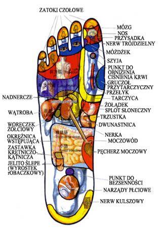 Chiński masaż punktowy - Centrum Regeneracji Organizmu EAML