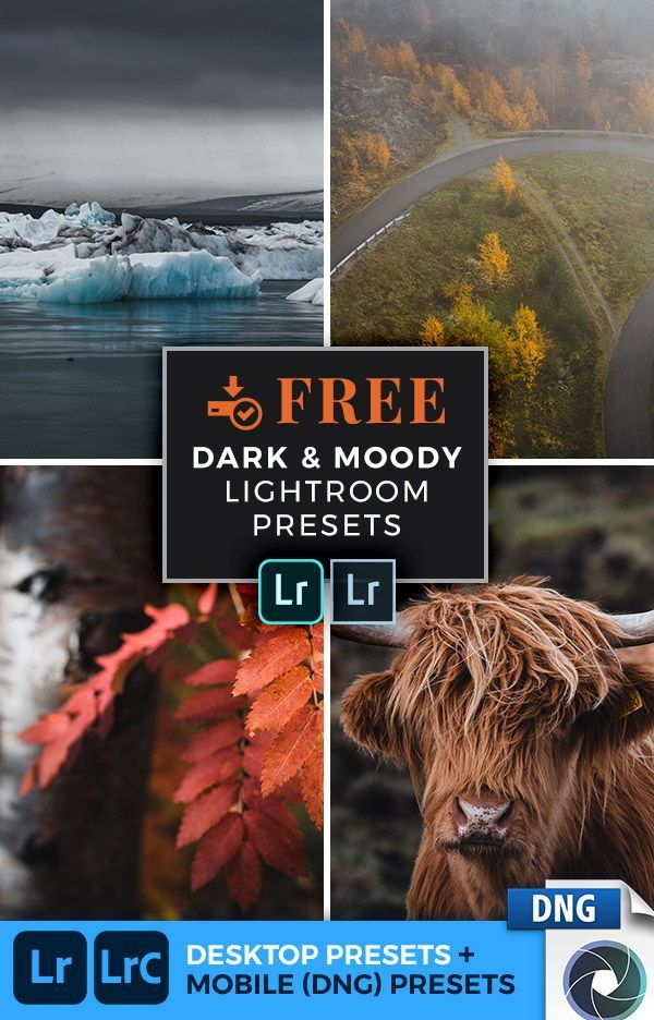 How To Add Xmp Presets To Lightroom Mobile