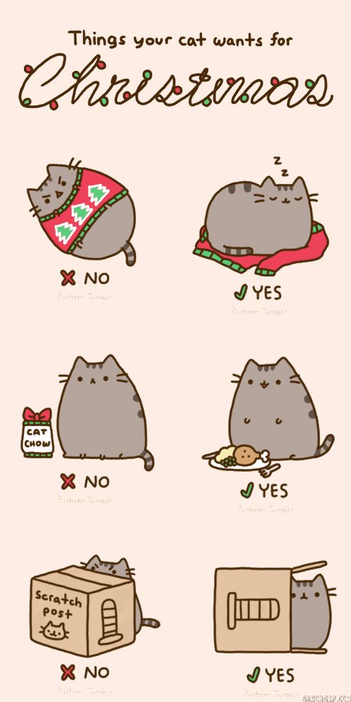 Hehe. I'm getting an ugly Christmas sweater from the thrift store for my cats to sleep on