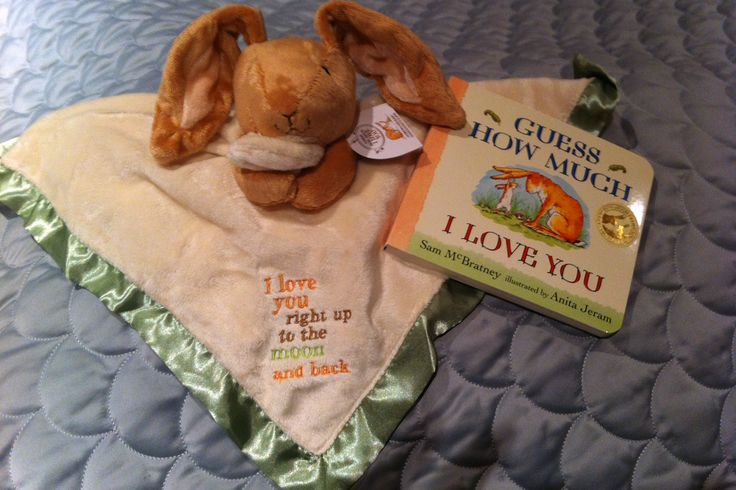 Baby shower gift - blanket, book, and stuffed animal.