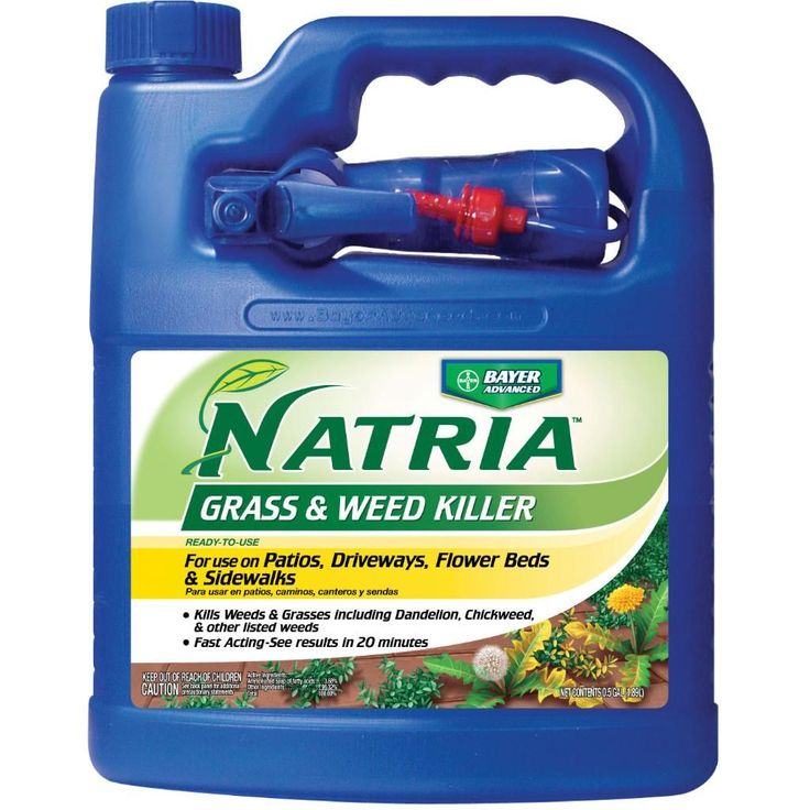 Bayer Advanced Natria Grass (Green) & Weed Killer Ready-to-Use (64-Ounces) (Bayer Advanced Natria Grass & Weed Killer) #706180A