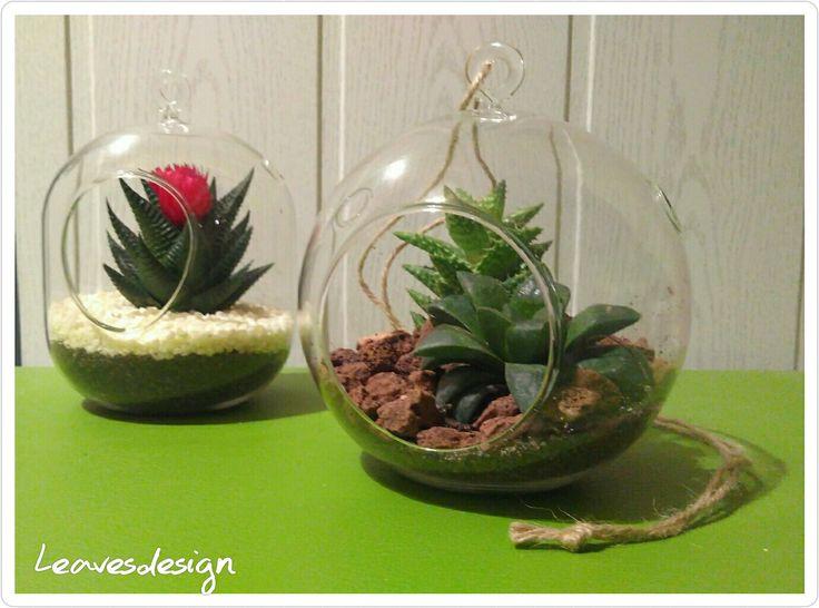 Terrarios de esfera de cristal con crasas  #terrarios #arreglosflorales #crasas #regalos #Leavesdesign