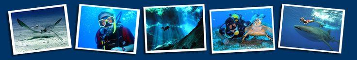 Scuba Dive the Mexican Riviera