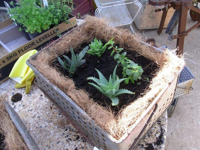 Then all you need to do is add your choice of  plants. Great rustic look for your garden!