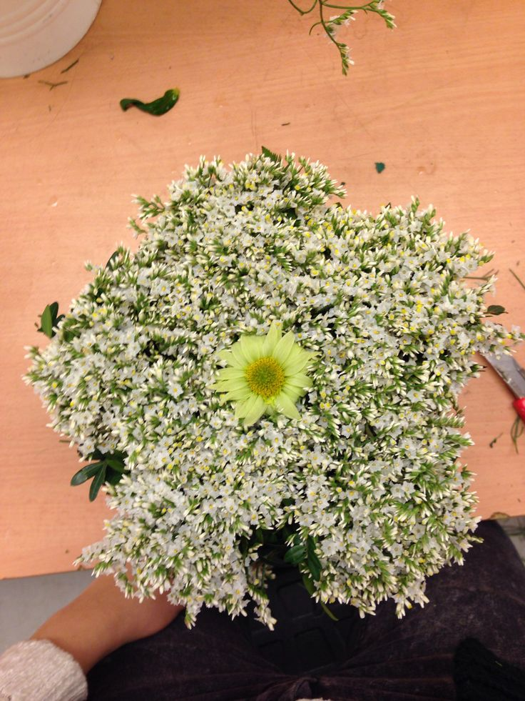 10. Jeg har snitte og sette lumonium i oasis rundt som en blomst.