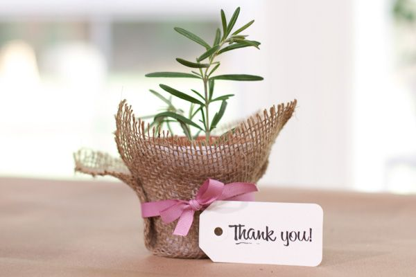 diy plant favor 35 MORE DIY Baby Shower Favors Were Loving
