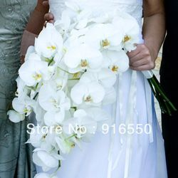 Goedkope , koop rechtstreeks van Chinese leveranciers: bruids bruiloft boeket bouqute real touch phalaenopsis orchidee boeket cascade gratis verzendingdeze prachtige cascade boeket is bestaat uit 5Real touch phalaenopsis. Het is zo elegant en geeft