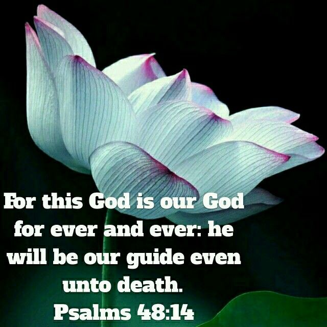 psalm 40 alluding to gods will 7 how beautiful on the mountains are the feet of those who bring good news, who proclaim peace, who bring good tidings, who proclaim salvation, who say to.