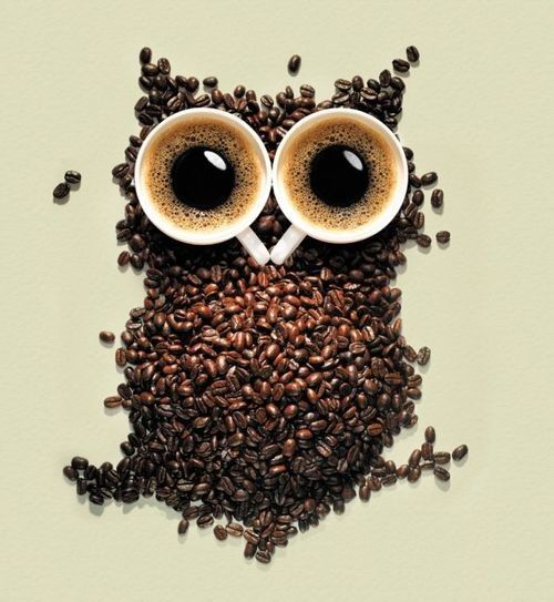 An owl made with coffee bean and cups of coffee... wow! (40+ Owl Logos on this site)