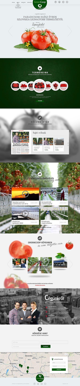 TOMATO WEB DESIGN on Behance
