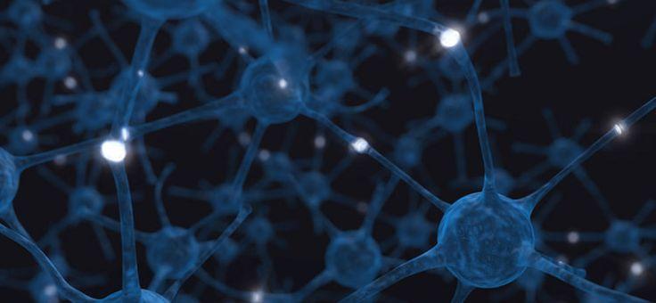 Neuroplasticitate – Cum sa-mi Invat Creierul Noi Obiceiuri
