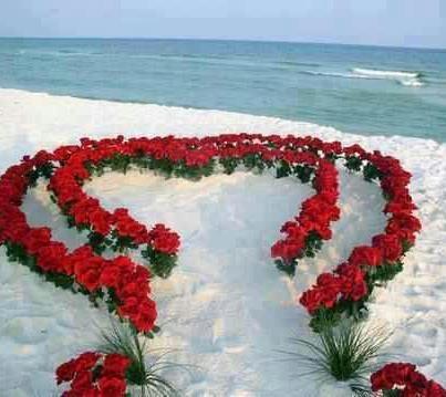 178 best beach destination wedding ideas images on pinterest beach bride page 3 of 146 beach weddings and destination wedding ideas junglespirit Choice Image
