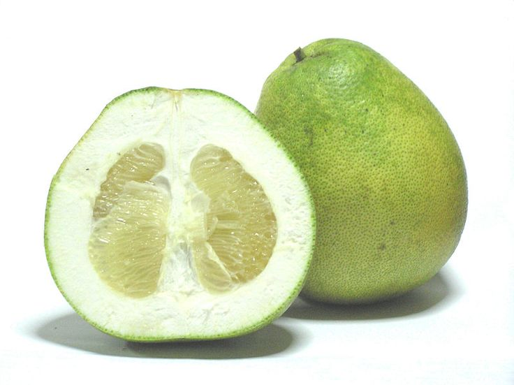 Citrus grandis - Honey White - The pomelo (Citrus maxima or Citrus grandis), pummelo, pommelo, or shaddock is a crisp citrus fruit native to South and Southeast Asia. It is usually pale green to yellow when ripe, with sweet white (or, more rarely, pink or red) flesh and very thick albedo (rind pith). It is the largest citrus fruit, 5.9 – 9.8 inches in diameter, and usually weighing 2.2 – 4.4 lbs.