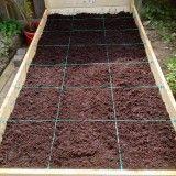 Ich pflanze nicht in Reihen, sondern in Quadrate. Immer wenn ein Quadrat abgeerntet ist, wird es danach neu bepflanzt. Das ist wunderschön einfach, macht das P… – D