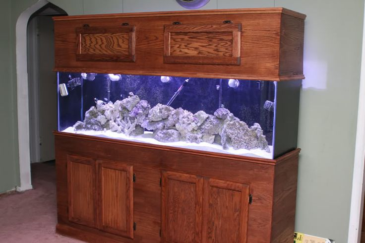 Oak fish tank cabinet woodworking projects plans for Plywood fish tank